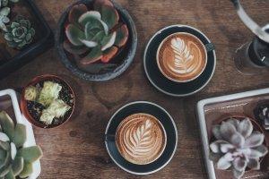 Kaffee Gemuetlich Koeln 1 Artikel – ©Unsplash