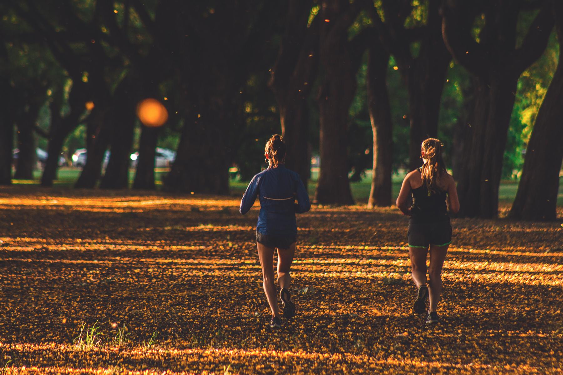 Laufen Herbst Koeln 1 Artikel – ©Unsplash