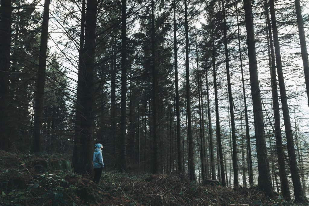 Wandern – ©Unsplash